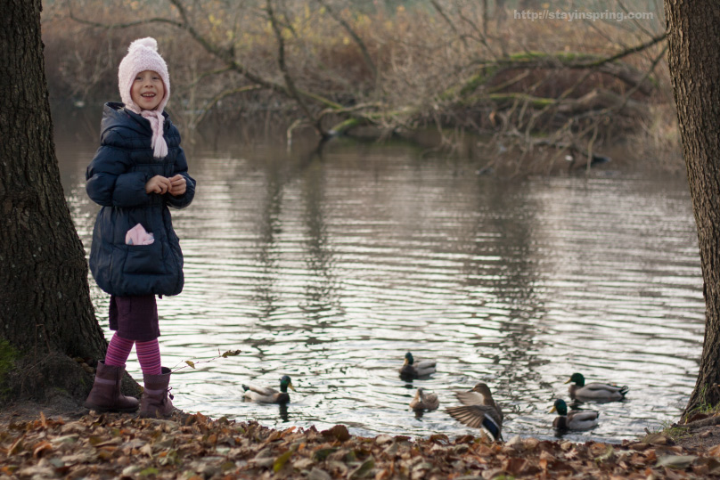 Veronika and ducks